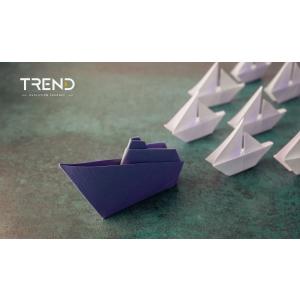 Schimbări în managementul și strategia Trend Consult
