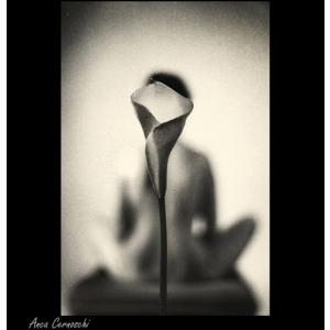 nud. Sensibilitate si fragilitate: expozitia Despre nud, de Anca Cernoschi