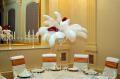 Imperial Ballroom salon in stil aristocrat in centrul Bucurestiului !