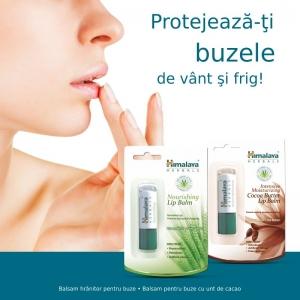 balsam buze. Balsamurile de buze de la Himalaya – protectia ideala pentru buzele dumneavoastra!