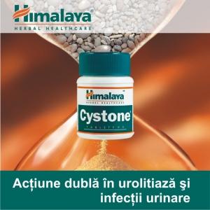 infectii. Cystone - Actiune dubla in urolitiaza si infectii urimare!