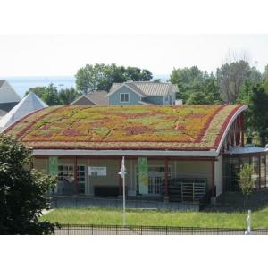 Ghid introductiv pentru optimizarea ecologica a sistemelor complexe de tip acoperis verde intensiv pentru gradina