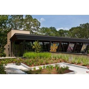 Intinerirea orasului se poate face cu vegetatie pentru acoperis verde in diferite forme