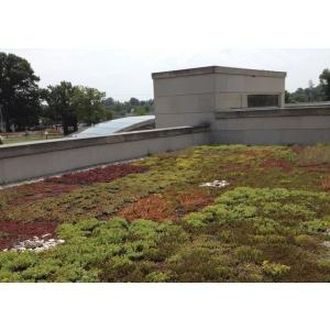 Odu Green Roof  - Avantajele economice si ecologice ale unui acoperis verde