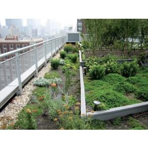 Odu.ro - Diversitate si profesionalism prin servicii complete pentru montare acoperis verde pret avantajos