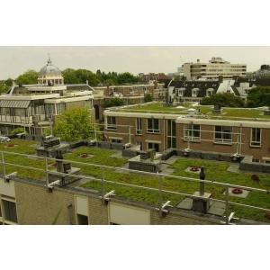 Specialistii ODU GREEN ROOF recomanda: Cum se realizeaza corect un sistem acoperis verde extensiv?
