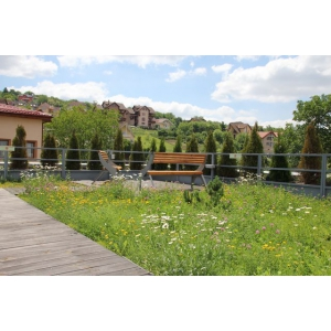 """Terase verzi Odu Green Roof – Descopera, la inaltime, cele mai frumoase momente de relaxare in """"jungla"""" urbana"""