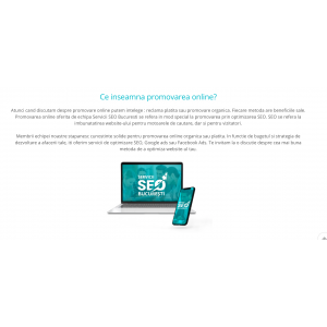 Promovare online pentru un site de business