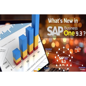 sap business one. SAP Business One