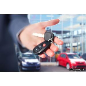 5 motive pentru a apela la serviciile unei firme de inchirieri auto Bucuresti pentru vacanta in Romania