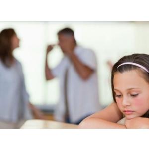 Ziua mondiala de combatere a violentei domestice