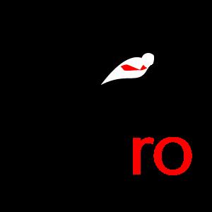 absolventi. Lansare REVIRO - Cariere de succes in Romania pentru absolventi de studii in strainatate