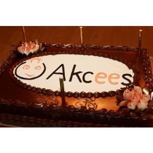 Akcees. Akcees - 1 an din pasiune pentru antreprenoriat