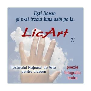 LicArt. Nikon premiaza talentul in cadrul celui mai mare concurs pentru liceeni - LicArt