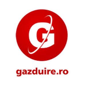 gratare cu gaz. Cum alegem cel mai potrivit pachet de  web hosting de la Gazduire.ro?