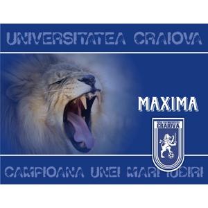 stiinta. universitatea craiova