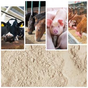 Bentonită Sodică Premium: ideală ca liant pentru furaje & aditiv în hrana animalelor (vite de lapte, porci, găini)