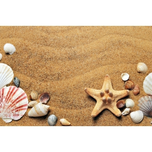DePlaja.ro și alegerea ideală pentru o relaxare deplină pe malul mării