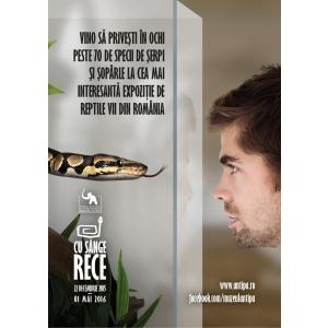 """reptile. """"Cu sânge rece"""", expoziţie temporară de reptile la Muzeul de Istorie Naturală """"Grigore Antipa"""""""