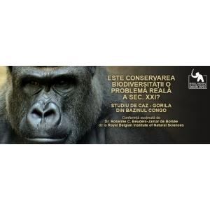 Este conservarea biodiversitatii o problema reala a sec. XXI? Gorila din Bazinul Congo - studiu de caz