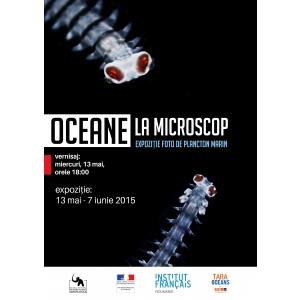"plancton. Invitație la vernisajul expozitiei ""OCEANE LA MICROSCOP. Expoziție foto de plancton marin"""