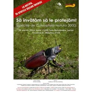 natura 2000. La Antipa, în spatele ușilor închise : Să învăţăm să le protejăm! (speciile de Coleoptere Natura 2000)