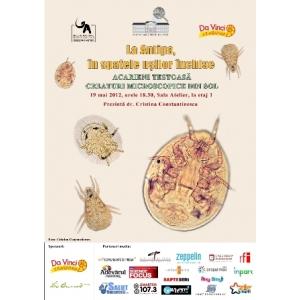 La Antipa, în spatele uşilor închise - Acarienii ţestoasă, creaturi microscopice din sol