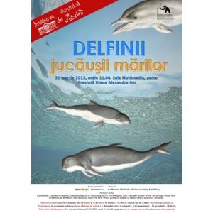 delfini. Întâlnirea de Duminică: Delfinii, jucăușii mărilor