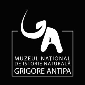 """proiecții pe fațada muzeului. Programul special de sărbători al Muzeului """"ANTIPA"""""""