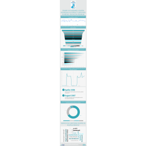 andrei vulpe. infografic despre curatenie
