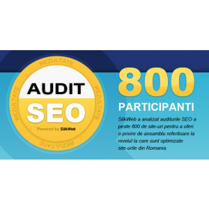infografic. rezultate audit seo