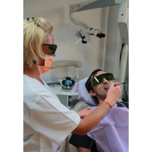 Stomatolog. medic stomatolog baia mare