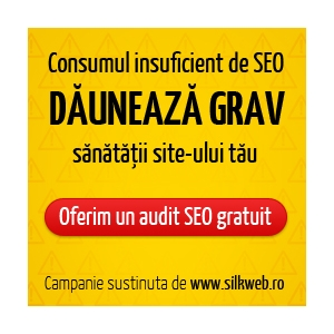audit it. audit seo