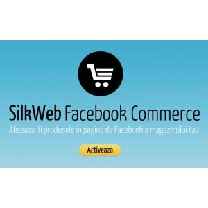 aplicatii fashion pentru Facebook. silkweb facebook commerce