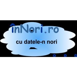 Declaratia 394 Corecta. Innori.ro - Prima platforma cloud computing B2B