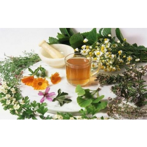 medicina. Beneficiile aduse de medicina naturista organismului uman