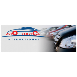 arad. www.autoserviceinternational.ro