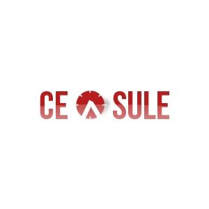 maniere elegante. Logo Ceasule.ro