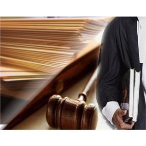soft avocati. Oficial, avocatii protejeaza interesele oricarei afaceri
