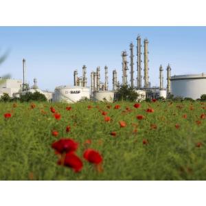transport sustenabil. Complexul de productie BASF pe Insula Friesenheim