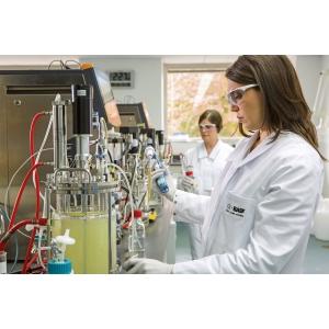 BASF plănuiește investiții cea mai mare unitate din Europa pentru producția ibuprofenului