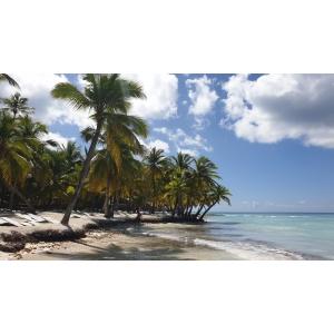 Vacanță în Punta Cana, Republica Dominicană