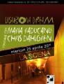 Lisabona Dream