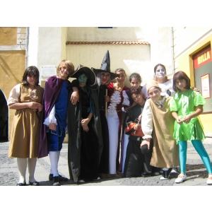festivalul medieval sibiu 2011. Proiectul ArtForm la festivalul medieval