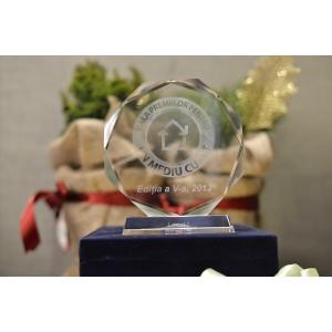 Asociatia Expertilor de Mediu. Gala Premiilor Pentru Un Mediu Curat 2013