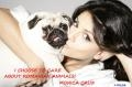 caini fara stapan. Actrita Monica Cruz sprijina cauza animalelor fara stapan din Romania!