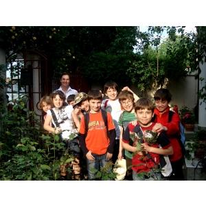 Cursuri de vară de limba engleză pentru copii şi tineri