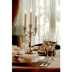 Carol Parc Hotel. Cina Romantica in Restaurantul POEM/Carol Parc Hotel