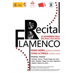 liza del sierra. Pedro Sierra si Juana la Tobala in recital flamenco la Bucuresti