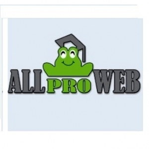 optimizare magazin online. Doriti mai multi clienti? Oferta promotionala de pret pentru optimizare SEO, promovare site si magazin online de la AllProWeb si SeoBusiness